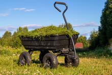 A Garden Cart On Four Wheels With Cut Grass. Summer, Daylight