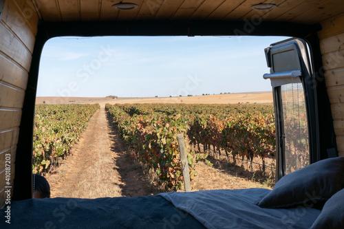 Vineyard view from inside a sel converted camper van living van life in Alentejo Fototapete