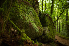 Big Moss Covered Rocks In The Forest Huelgoat In Finistere, Britanny, France. Forest Like Fairly Tails.