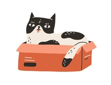 Cute And Funny Cat Lying Inside Cardboard Box With Tongue Out Isolated On White Background. Adorable Spotted Black And White Kitty Sitting In Carton. Hand Drawn Colored Flat Vector Illustration