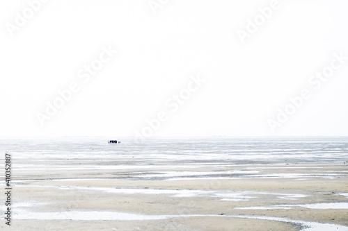 Obraz na plátně Eine Gruppe Menschen wandert bei Ebbe im Watt bei Terschelling