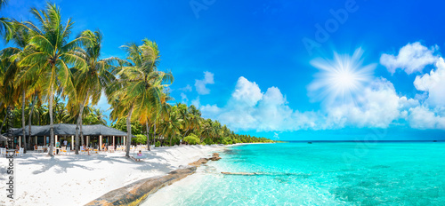 Leinwand Poster Beauty view of beach line with tall palms tree and ocean