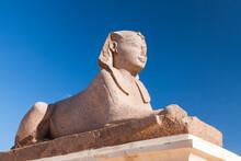 Alexandria, Egypt. Sphinx Statue