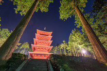 Five-story Pagoda Of Taiseki-ji In Shizuoka, Japan