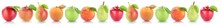 Apple Pear Fruits Apples Pears Fresh Fruit Collection Peach In A Row Isolated On White