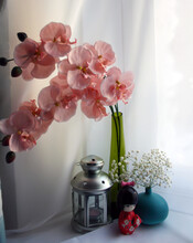 Window Display With Pink Orchids In Green Vase, Lantern, Japanese Doll And Gypsophila Flowers In Blue Vase.