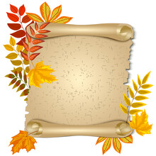 Leaves And Scroll In Illustration.Colored Illustration With Paper Scroll And Autumn Leaves.