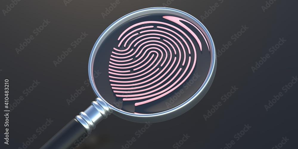 Fototapeta Fingerprint and magnifier on black background. Human thumbprint, detective search concept. 3D illustration