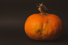 Autumn Orange Food Vegetable Pumpkin Background Halloween