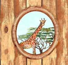 Safari Animal Watercolor Portrait In Oval Wooden Frame On Wooden Scratched Grunge Background