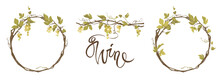Grapevine - Vector Illustration. Design Elements With A Twisting Vine With Leaves And Green Berries. Freehand Drawing In Watercolor Style. Frame With Vine.