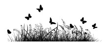 Abstract Background With Black Silhouettes Of Meadow Wild Herbs And Flowers. Wildflowers. Flying Butterflies. Hello Summer. Floral Background. Wild Grass. Vector Illustration.