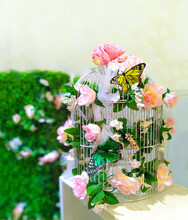 Birdcage With Butterfly And Blooming Roses
