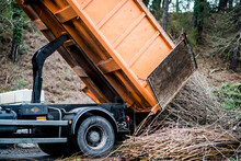 Truck Unloading Its Cargo Of Branches In A Recycling Center