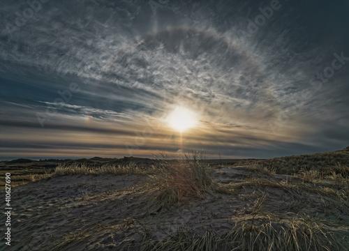 Fotografie, Obraz Dunes at the North Sea coast in rural Denmark
