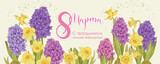 flowers hyacinth and daffodil flowers. 8 march banner