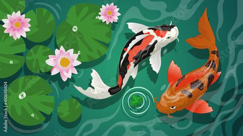 Slika na platnu koi fishes swiming in the pond