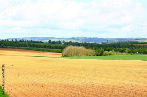 Fototapeta Beautiful rural landscape of large farmlands obraz