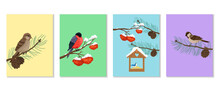Set Of Vertical Cards With Wintering Birds. Sparrows, Bullfinch And Nuthatch On Tree Branches. Vector Print Designs, Baby Animal Illustrations.