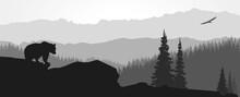Paysage De Montagne Avec Ours