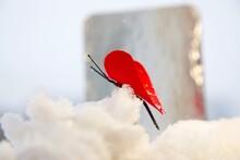 Love Come True In The Valentine Day