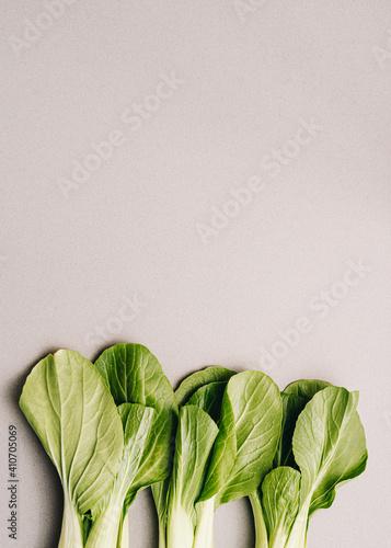 Pak Choi, pok choi, bok choy, fresh green Chinese cabbage on grey background Fotobehang