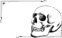 A Hand Sketched Skull With A Spider Web Frame And Copyspace.