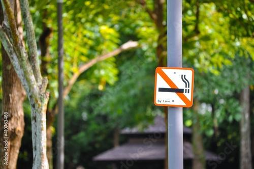 Fototapeta No Smoking Sign Against Trees On Pole obraz