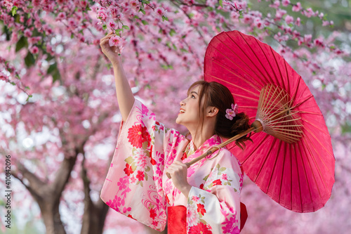 Tableau sur Toile woman in yukata (kimono dress) holding umbrella and looking sakura flower or che