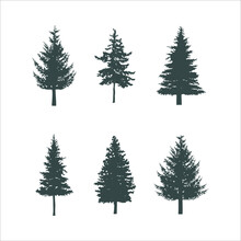 Silhouette Black Different Pine Tree Types Vector