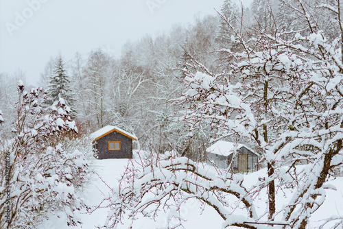 Winter scenery of a small hut in a snow-covered forest Fototapete
