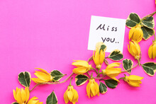 Miss You Message Card Handwriting With Yellow Flowers Ylang Ylang  Arrangement Flat Lay Style On Background Colorful Pink