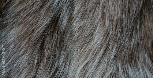 Obraz Brown fur in the form of texture - fototapety do salonu