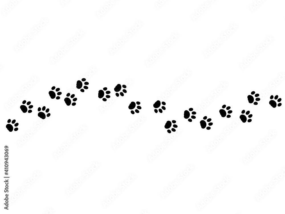 Fototapeta animal paw footprint vector walk