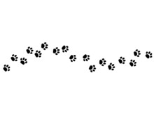 Animal Paw Footprint Vector Walk