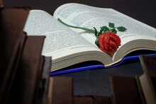 A Red Rose Made Of Beads Lying On An Open Book Surrounded By Other Books