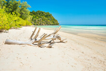Driftwood On Beach By Sea Against Sky