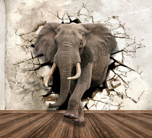 3d Picture Elephant Destroys The Wall