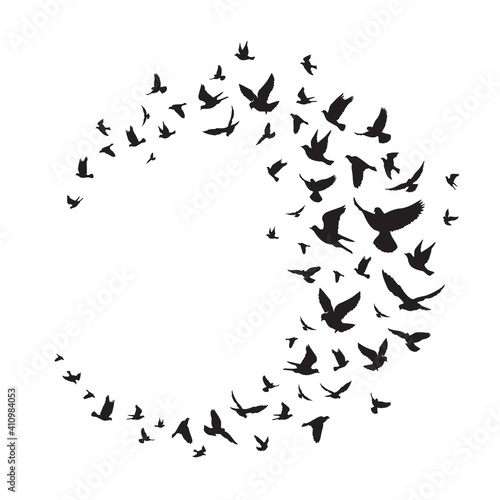 Flying birds silhouette illustration. Vector background Fototapeta