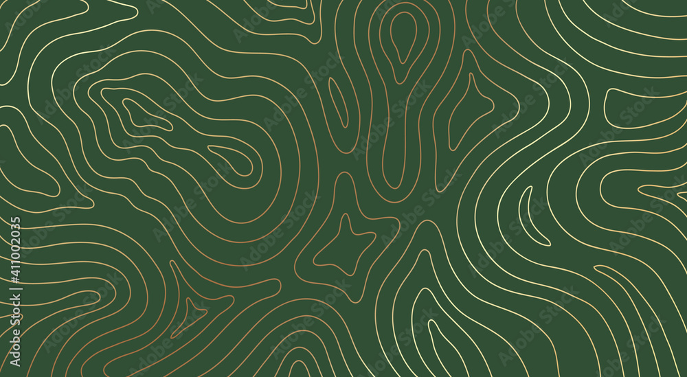 Fototapeta Abstract gold topographic lines on a green background. Golden line waves topographical design. Geographic mountain contours Vector Illustration