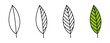 leaf line icons set. Vector illustration isolated on white background
