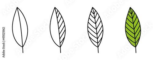 Obraz leaf line icons set. Vector illustration isolated on white background - fototapety do salonu
