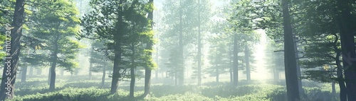 Slika na platnu Beautiful park in the rays of the sun in the morning in the fog, forest in the h