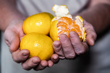 Woman Hand Takes Tangerines From Wooden Table
