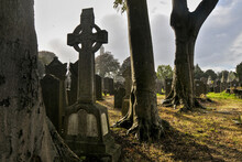 The Glasnevin Cemetery