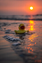 Close-up Of Yellow Rubber Duck Floating On Sea During Sunset