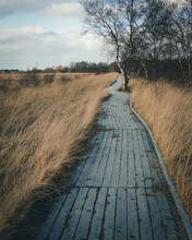 Wooden Path Into A Moor Landscape