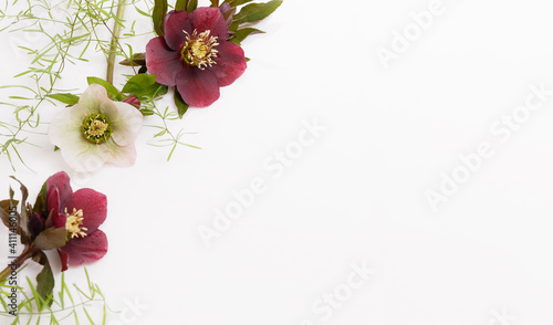 Slika na platnu Frame of purple flowers with space for text on white background