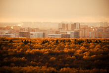 Fog Over A Large Autumn Forest With City Buildings In The Distance