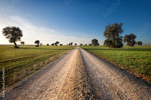 camino a ninguna parte en medio de un paisaje Fototapet